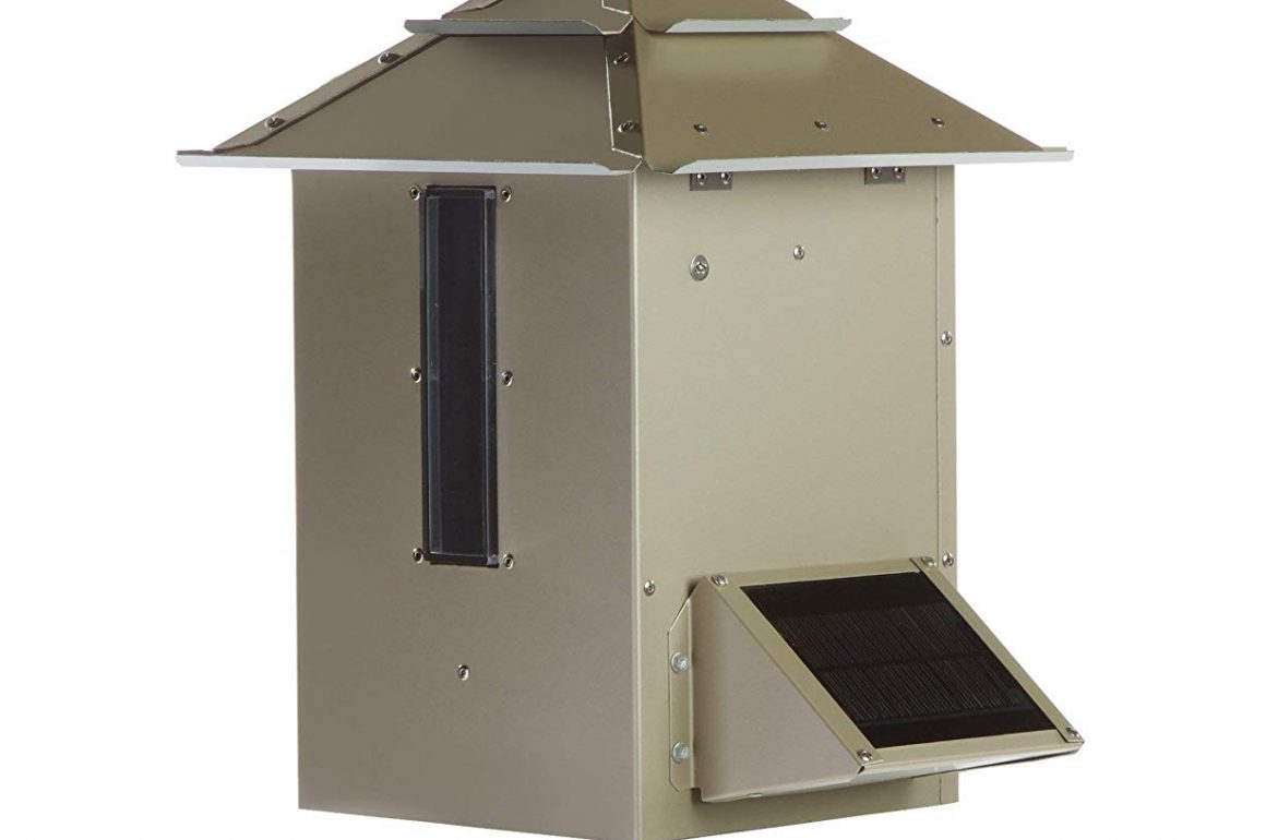 Best Pond Fish Feeder